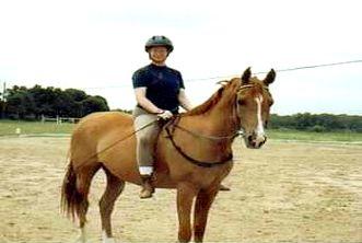 Horse Whisperer with Arabian Taylor