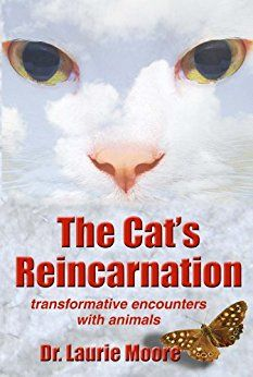 The Cat's Reincarnation book cover