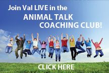 Join Val Now