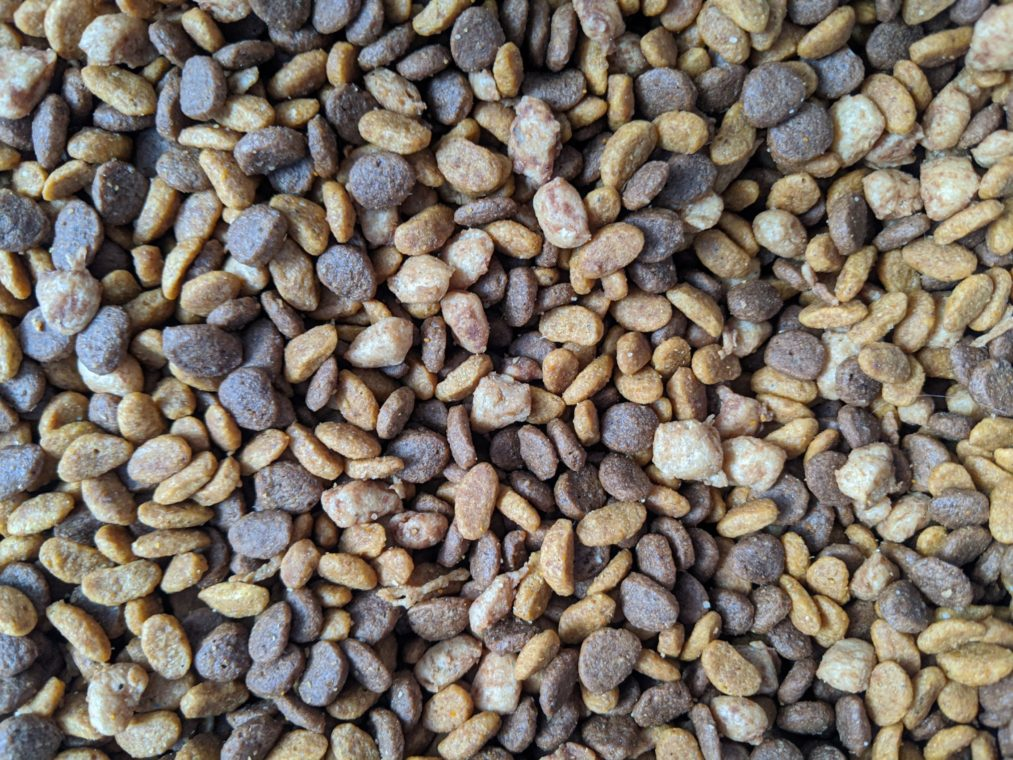 all about pet food