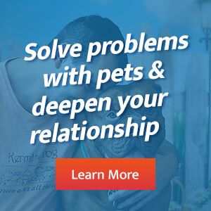 Problem Solving with Pets
