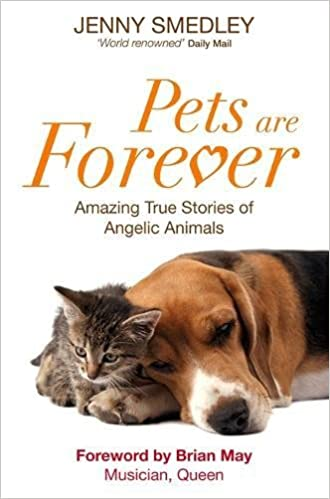 animal reincarnation pets are forever