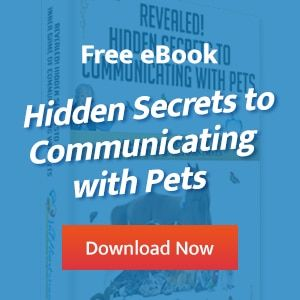 Free Ebook Hidden Secrets to Animal Communication