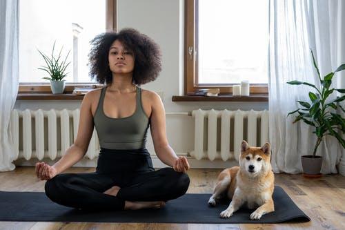 meditation with dog
