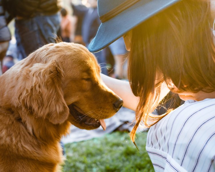 Five Benefits of Animal Communication