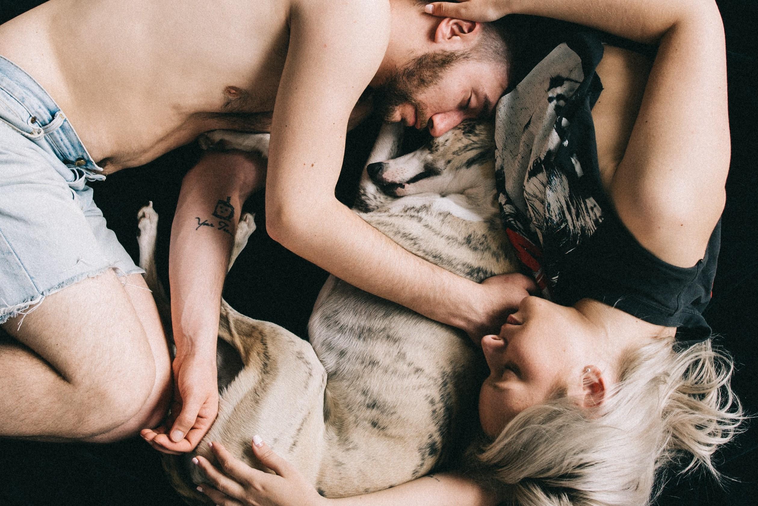 Human Animal BodyMind Connection