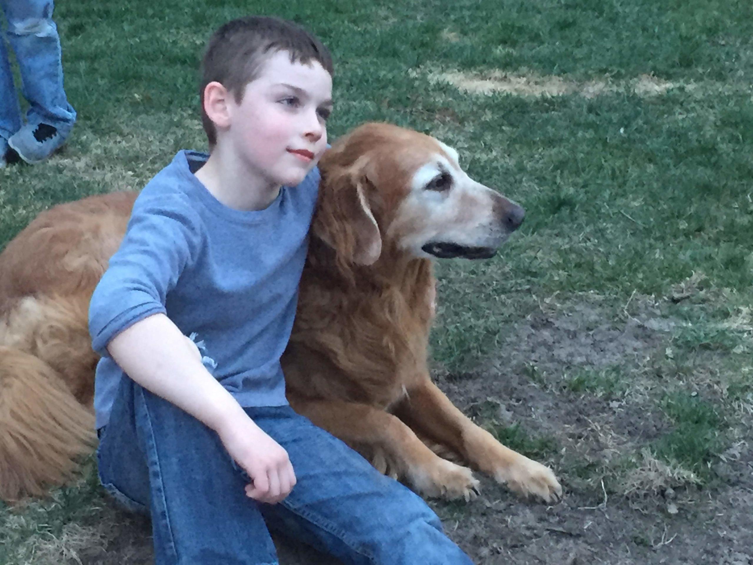 friendliest dog breeds golden retriever and boy