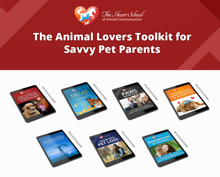Animal Lovers Toolkit