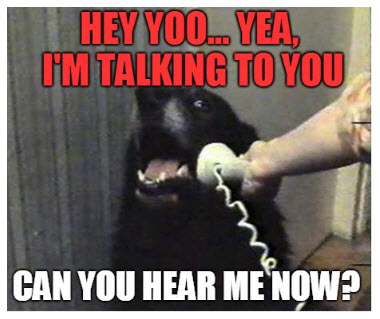 dog can you hear me now signals