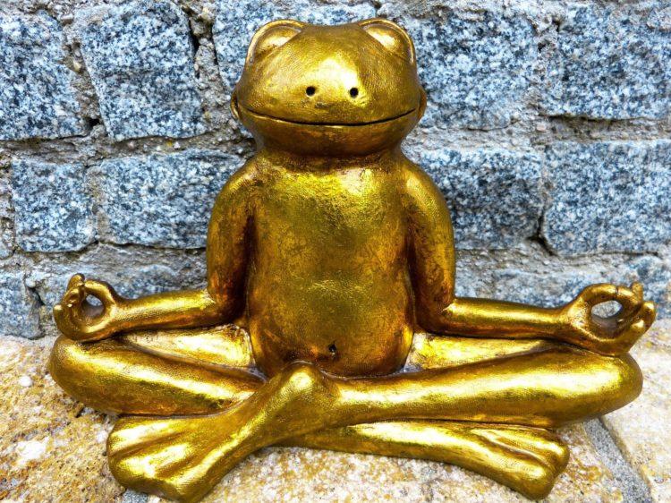 Animal Talk Gold Frog Buddha