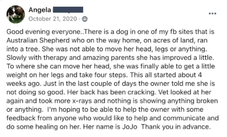 Angela with JoJo's story