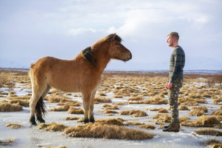 intuitive animal communication 2
