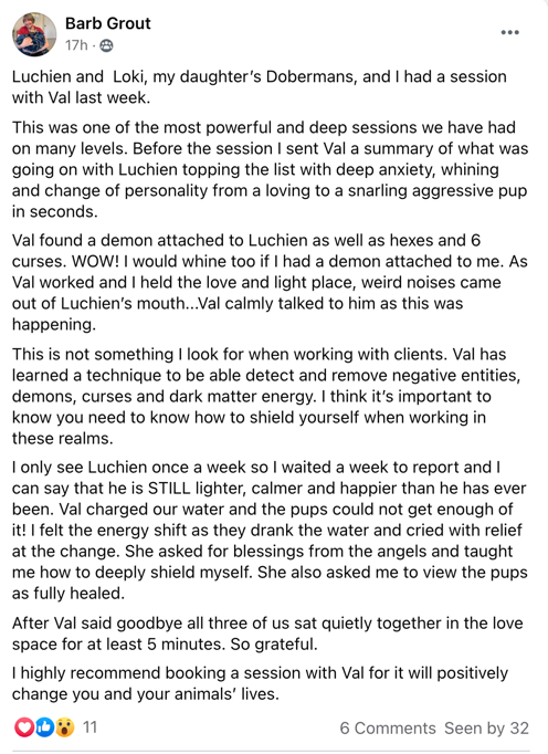 Barb Grout testimonial healing with luchien and loki